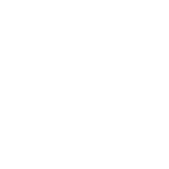 Berkshire Hathaway HomeServices Seal Logo